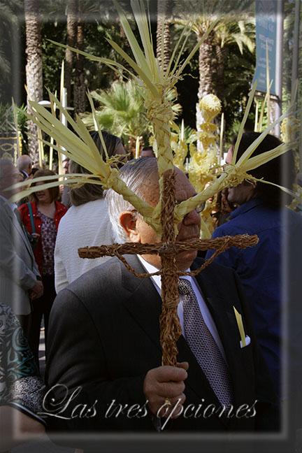 Domingo de Ramos, Elche 2014