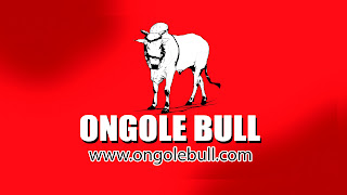 Ongole Bull Competitions Video channel