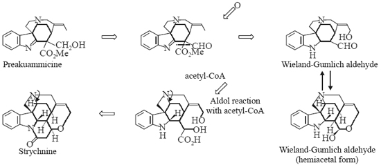 Wieland-Gumlich aldehyde (hemiacetal form)