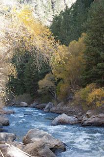 Video Production | Real Estate Colorado Springs | Realtor Colorado Springs | 80921