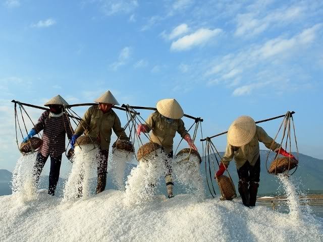 Tuyet Diem Salt Making Village