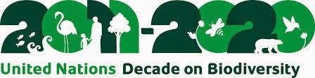 ONU per la Biodiversità