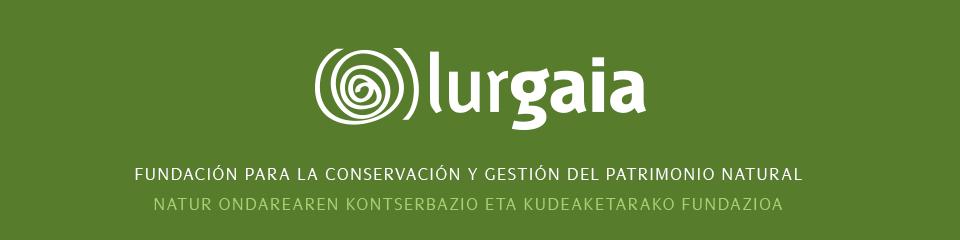 Fundación Lurgaia Fundazioa