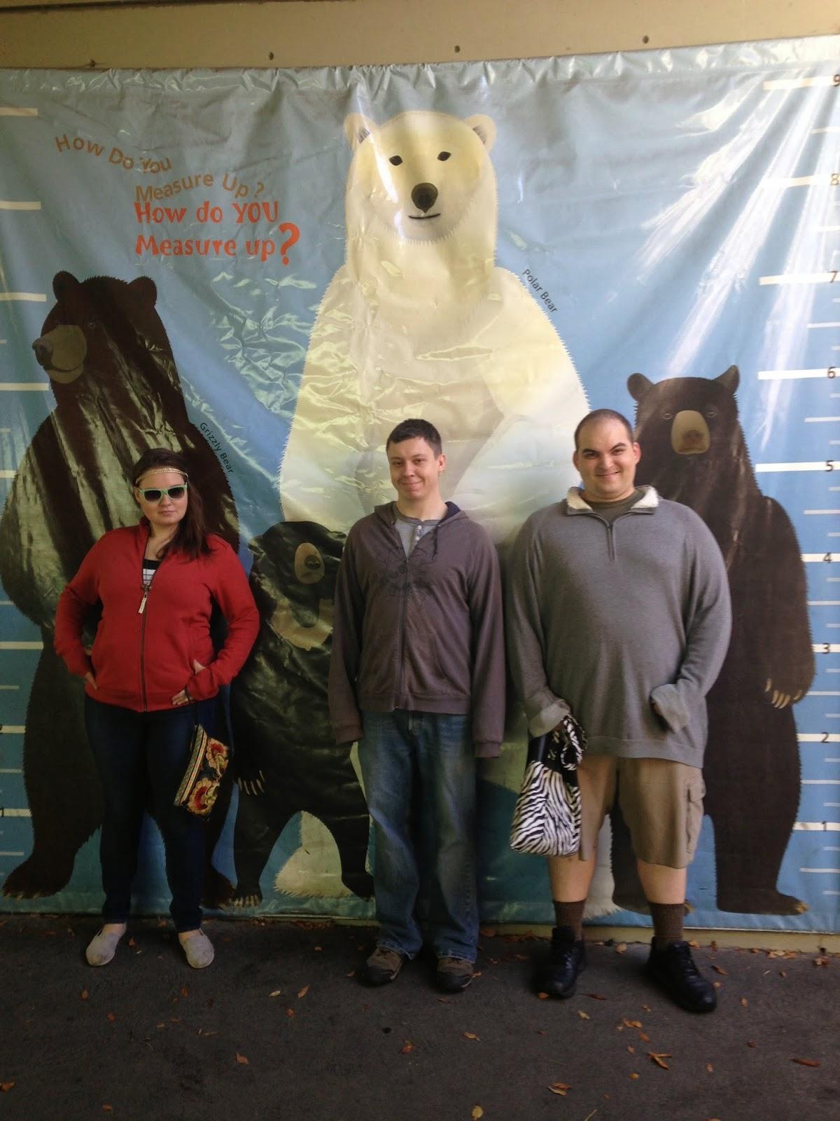 polar bears grizzly bears