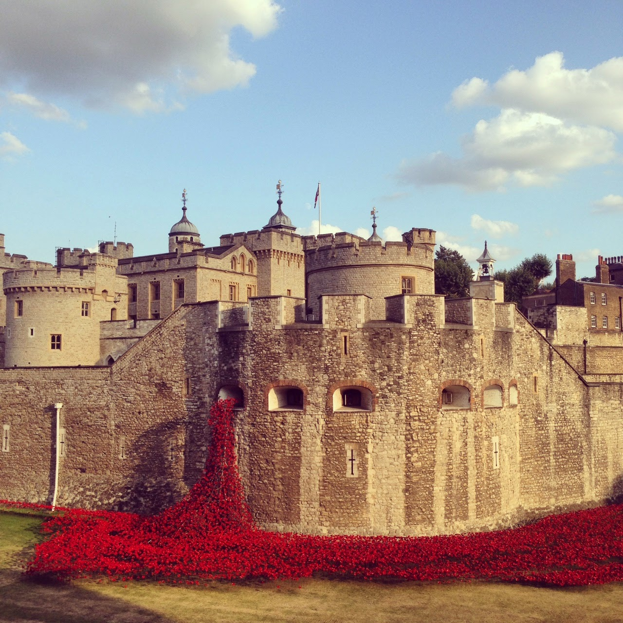 Art Installation Tower of London Poppies Poppies at The Tower of London