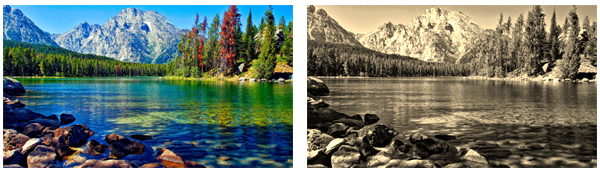 CSS Filter effect: convert to sepia image