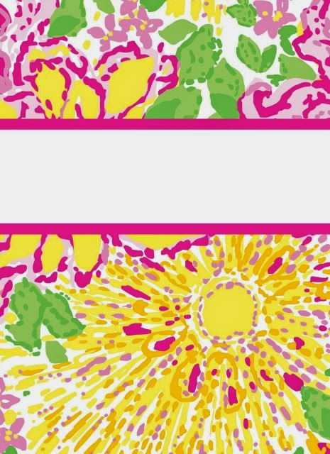 Lilly Pulitzer Blank Binder Covers For math i used lilly pulitzer