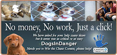 9/8/12 Dogs in Danger Needs Your Help in Contest