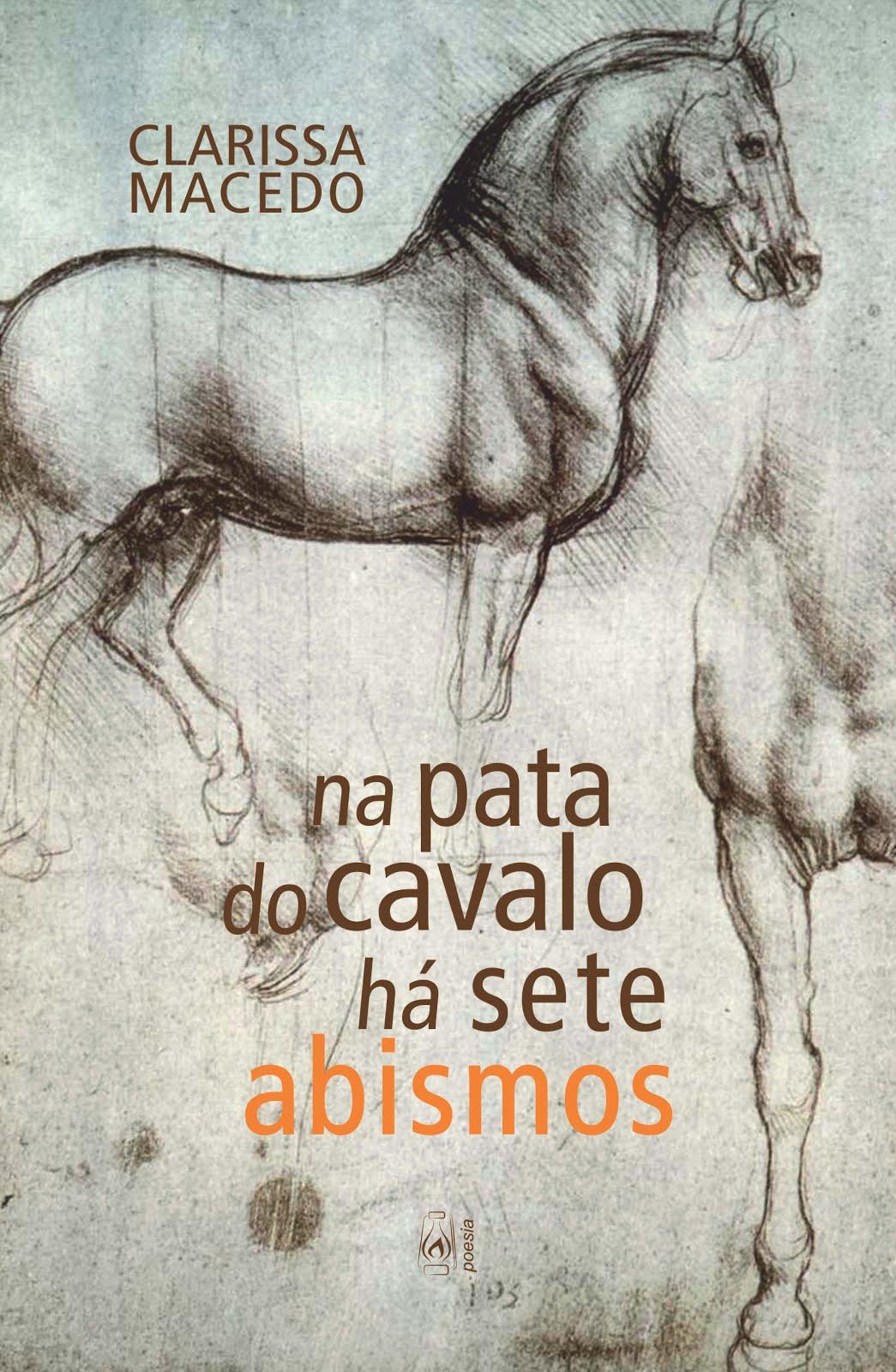 2ª edição do livro Na pata do cavalo há sete abismos