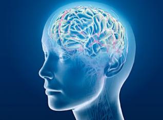 6 Tips Ampuh Agar Otak Tambah Pintar