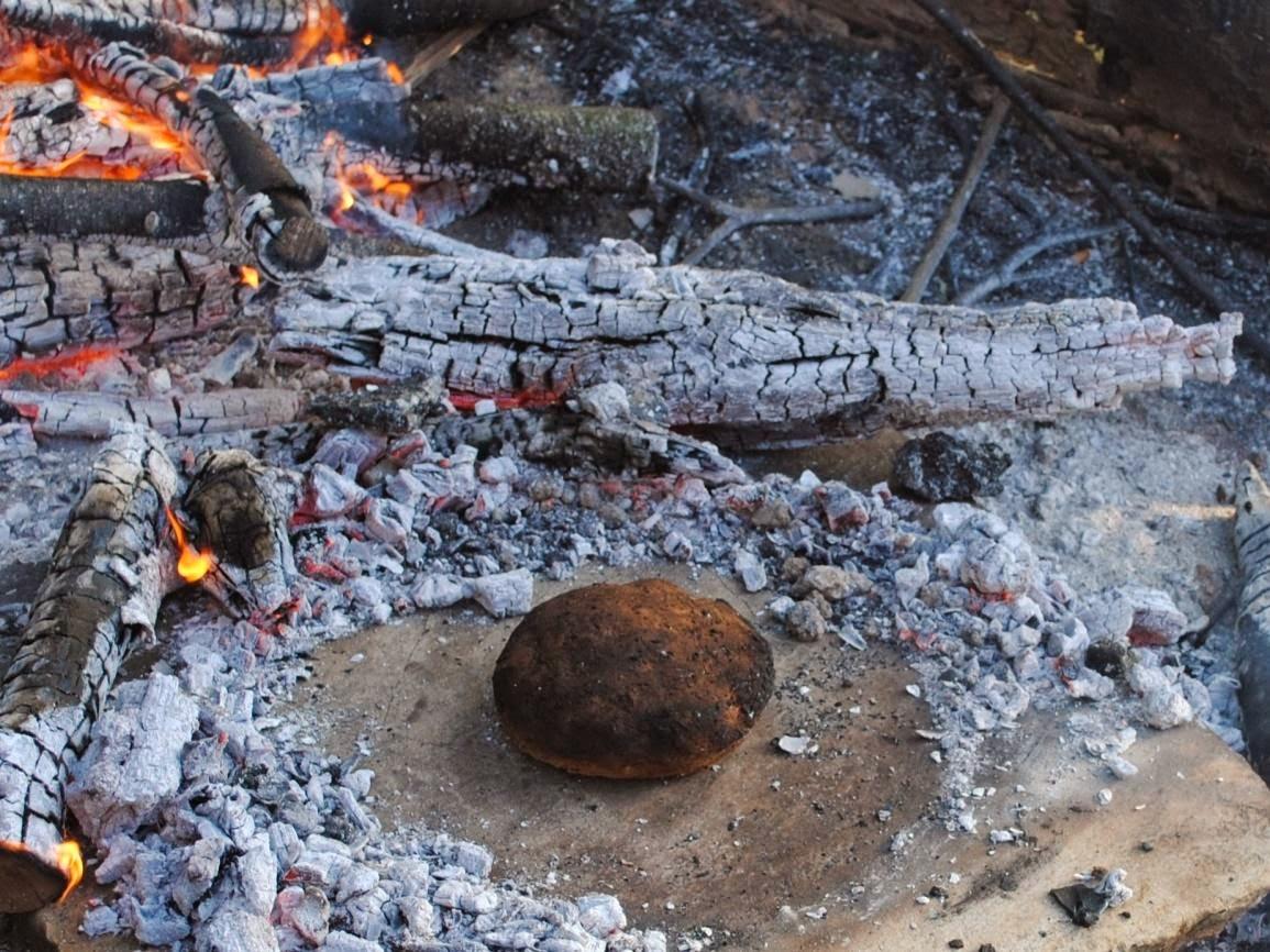 old european culture eating acorns