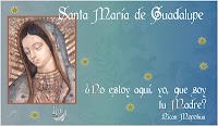 http://2.bp.blogspot.com/-mmvvTUqJT20/UMivTreh1VI/AAAAAAAALao/W7UayMsyZZ4/s400/guadalupe+medallita.jpg