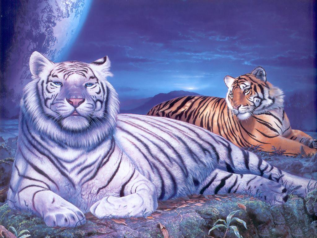 http://2.bp.blogspot.com/-mnQdTZAUZ04/UMiR7rQIZ7I/AAAAAAAABMc/xNH9Y5CGg4I/s1600/Tigers-Desktop-Wallpaper.jpg