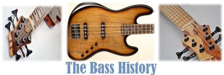 The Bass History