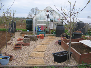 Greenhouse Area, gravel and planters