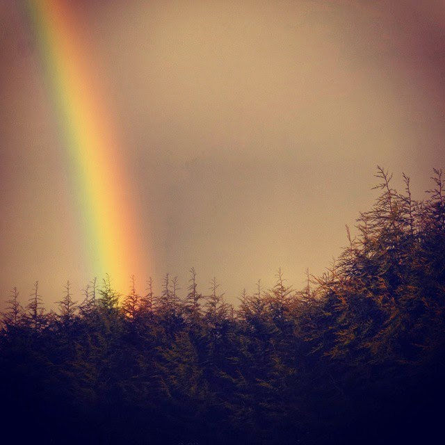 A Rainbow that could be seen from the back garden