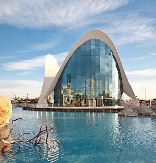 Visita el Oceanografic en Valencia España