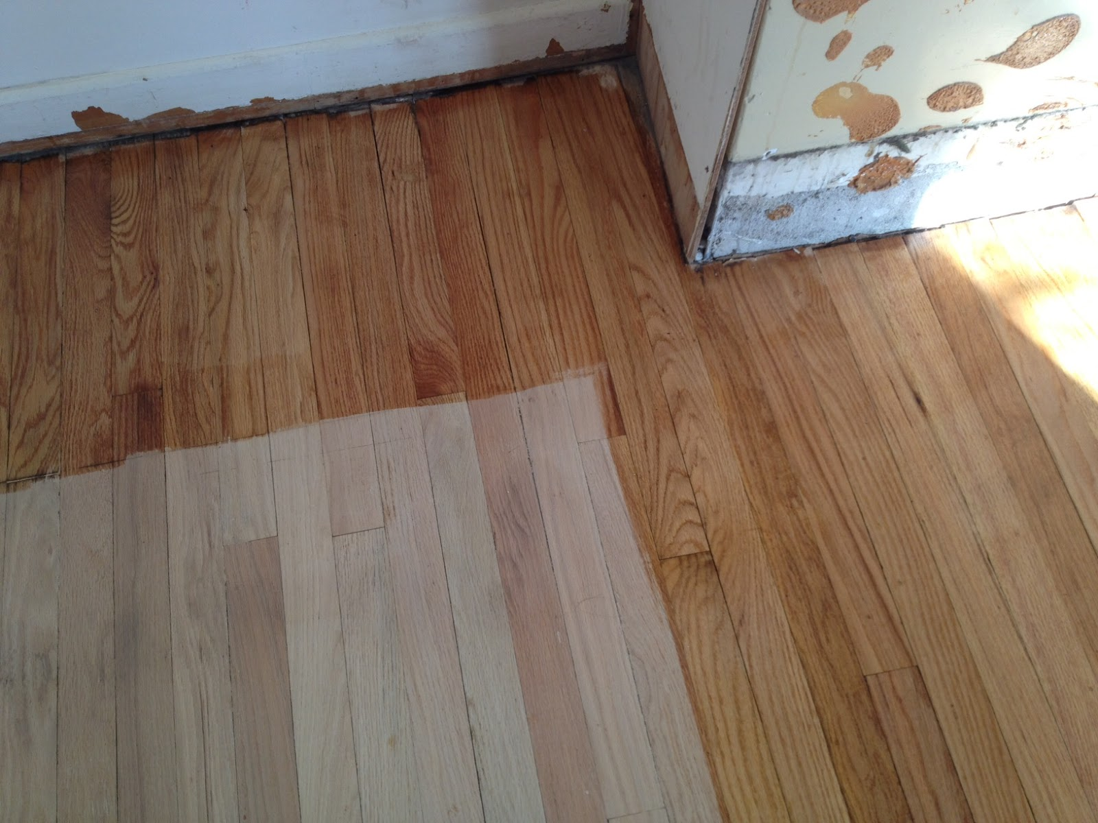 wood stain colors for red oak floor ask home design