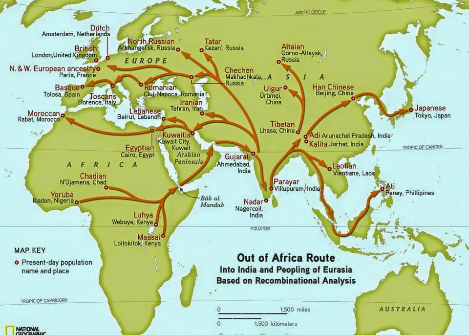 Anthropology/ Multiregionalism Vs. Out Of Africa term paper 18613