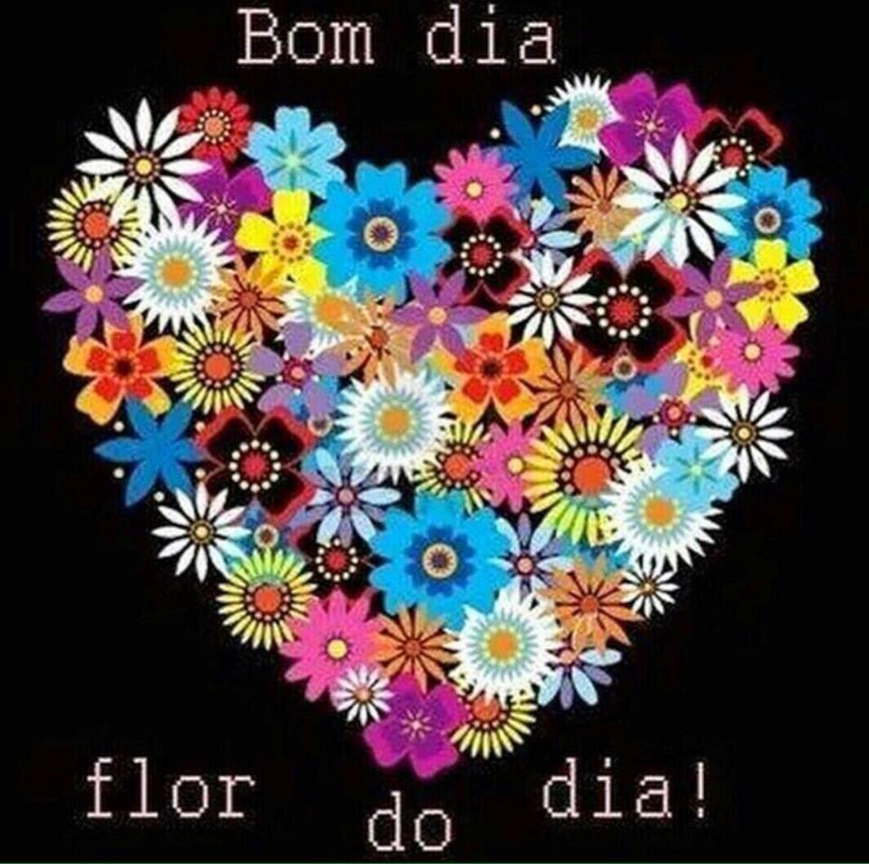 mensagem de bom dia com flores - bom dia flor