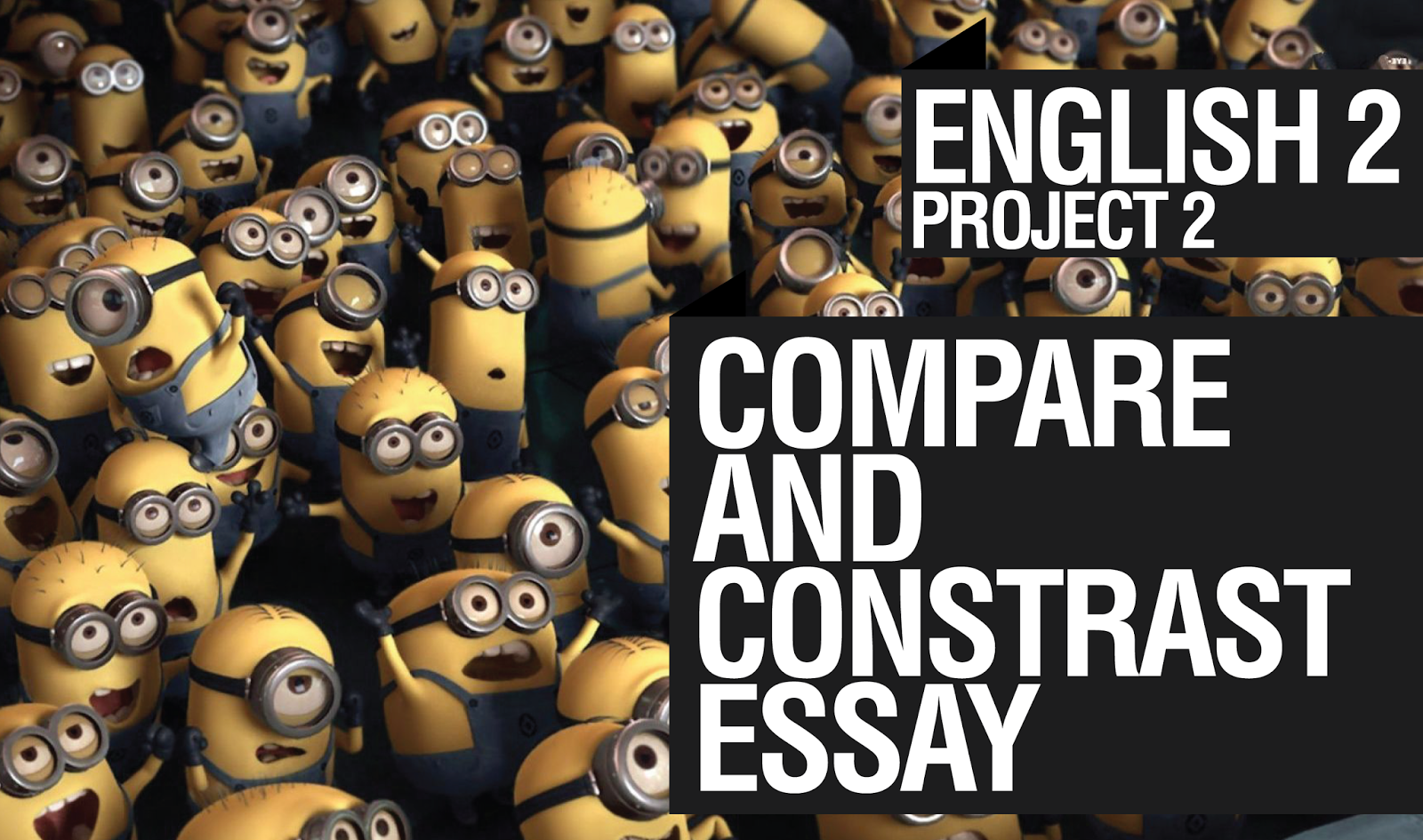 Essay compare contrast between two movies