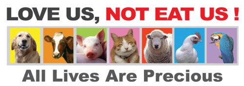 Veganmisjonen Oppskrifter Veganmat Vegetarmat