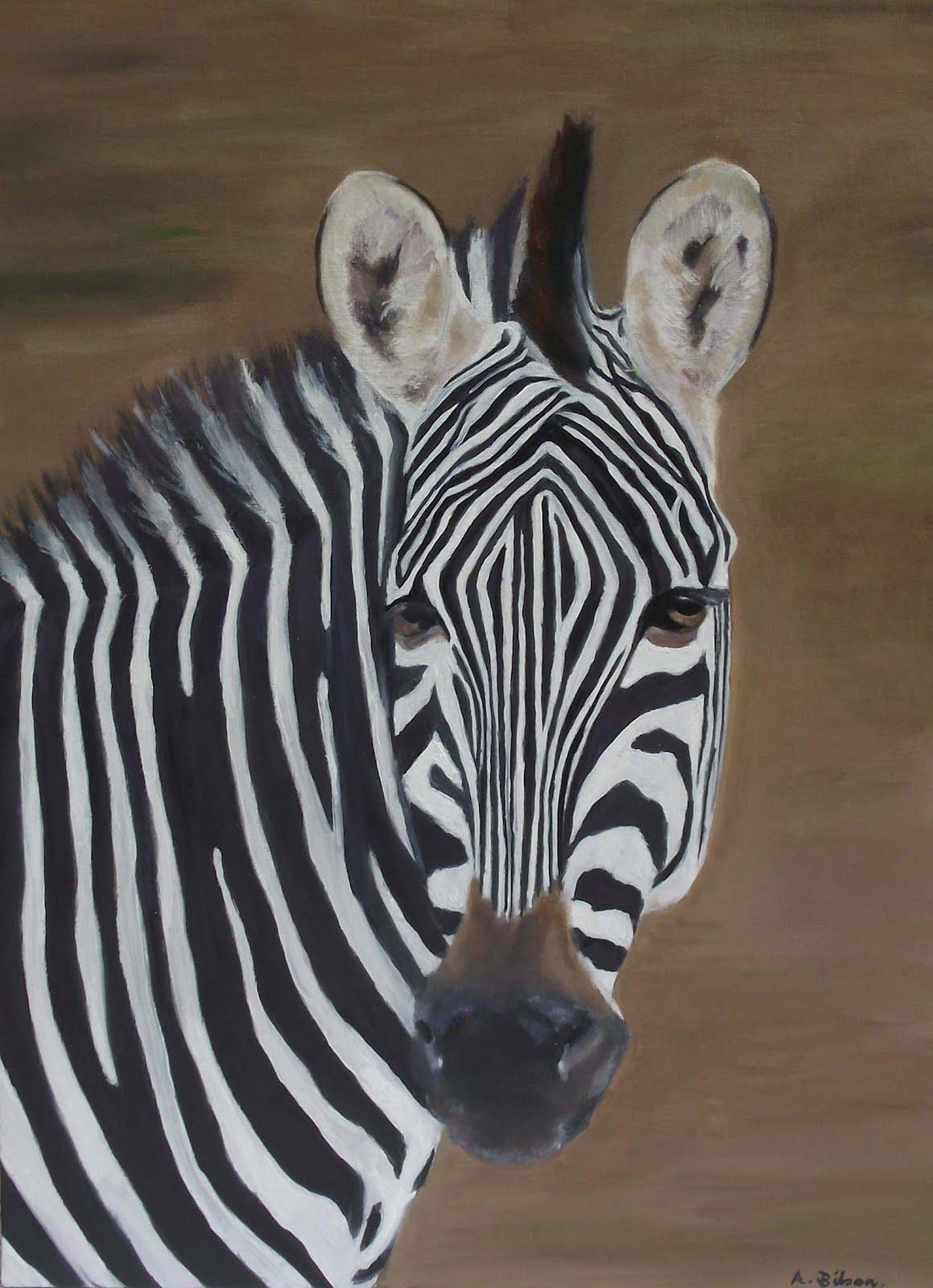 gambar hewan - foto zebra
