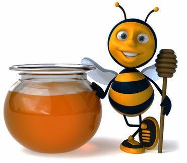 Rette die Honigbiene