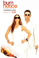 The Burn Notice, Season 4, dvd, cover