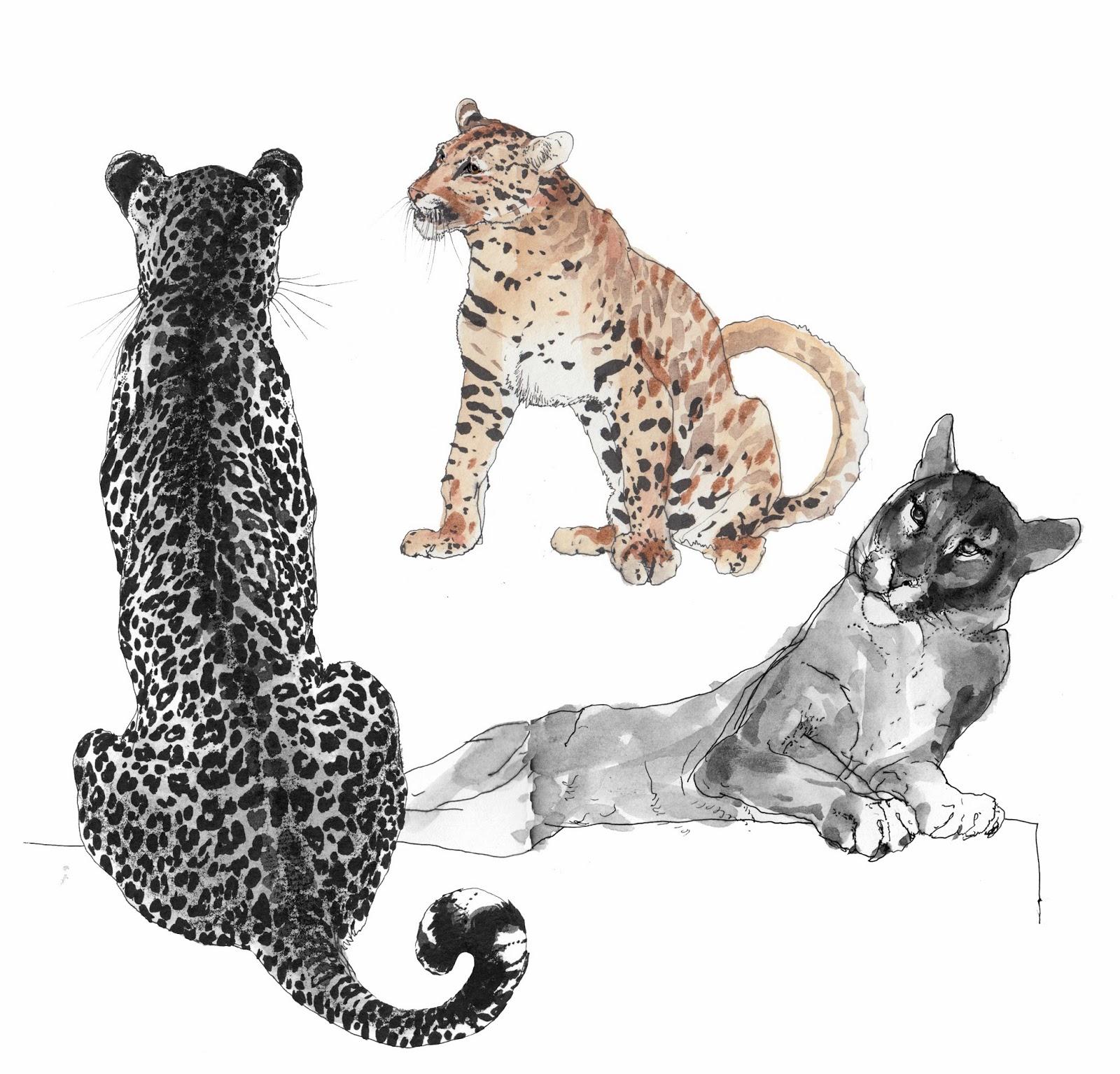 mutant leopards the messybeast - HD1600×1534