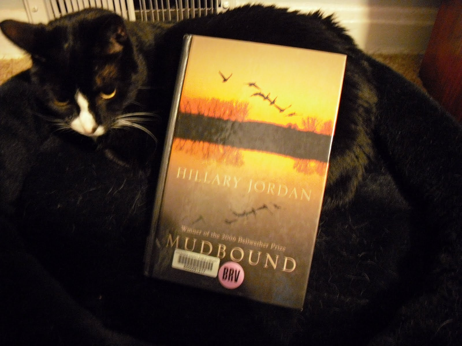 Mudbound By Hillary Jordan Is Historical Fiction That Reminded Me Of The  Help But Is A Much Faster Read I Loved This One Even More Than When She  Woke,