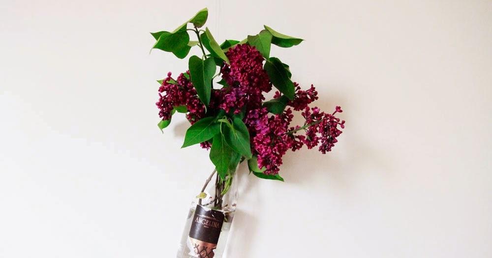 merci raoul diy 12 r cup le vase suspendu. Black Bedroom Furniture Sets. Home Design Ideas