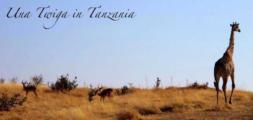 Una Twiga in Tanzania