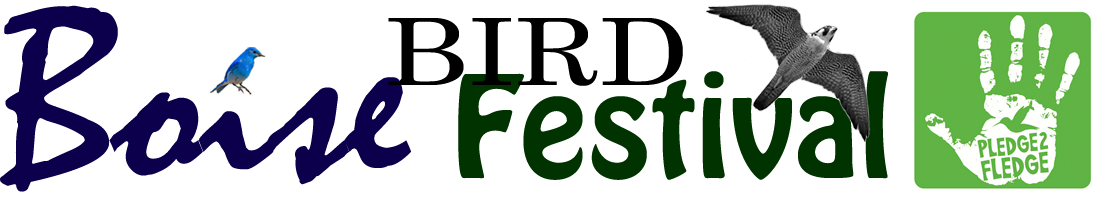 Boise Bird Festival