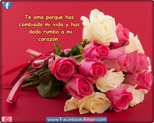 Imagenes bonitas de rosas y la playa con frases romanticas