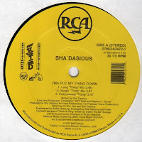 Sha\'dasious - I\'ma Put My Thing Down (VLS) (1993)