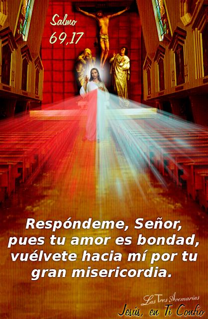 imagen de jesus salmo 69,17