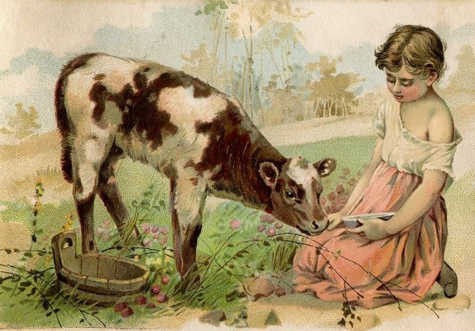 Jane Elliot jane elliott msjc