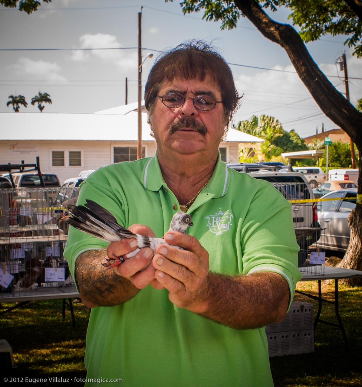 Judging at the ewa bird show for Waimanalo feed supply