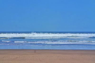 "<a href=""http://mataram.info/things-to-do-in-bali/visitindonesia-banda-marine-life-the-paradise-of-diving-topographic-point-inward-fundamental-maluku/"">Indonesia</a>best destinations : Melepas Tukik Di Pantai Ngagelan"