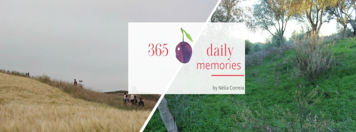 365 Daily Memories