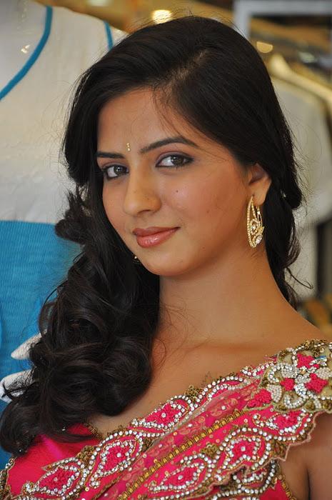 South New Desi Actress Nisha Shah Latest Cute Saree Photos Photoshoot images