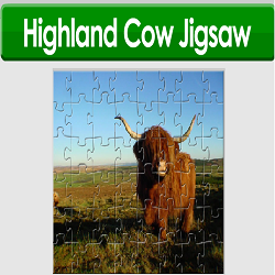 Higland Cow Jigsaw Puzzle Game