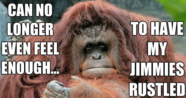 Curlin' in the squat rack: Logan's log Orangutan-jimmies-rustled