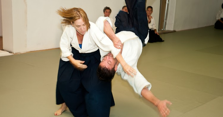 Image Result For Aikido Movies Youtube