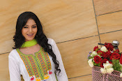 Sanam shetty new glamorous photos-thumbnail-2