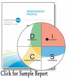 free disc report sample