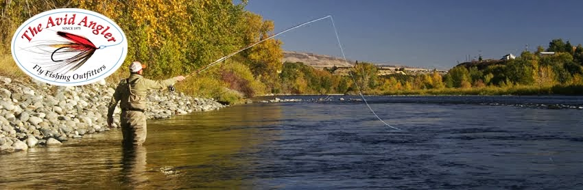 The Avid Angler, Fly Fishing Outfitters