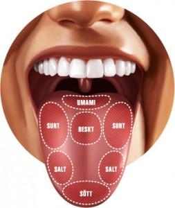 Ont i tungan