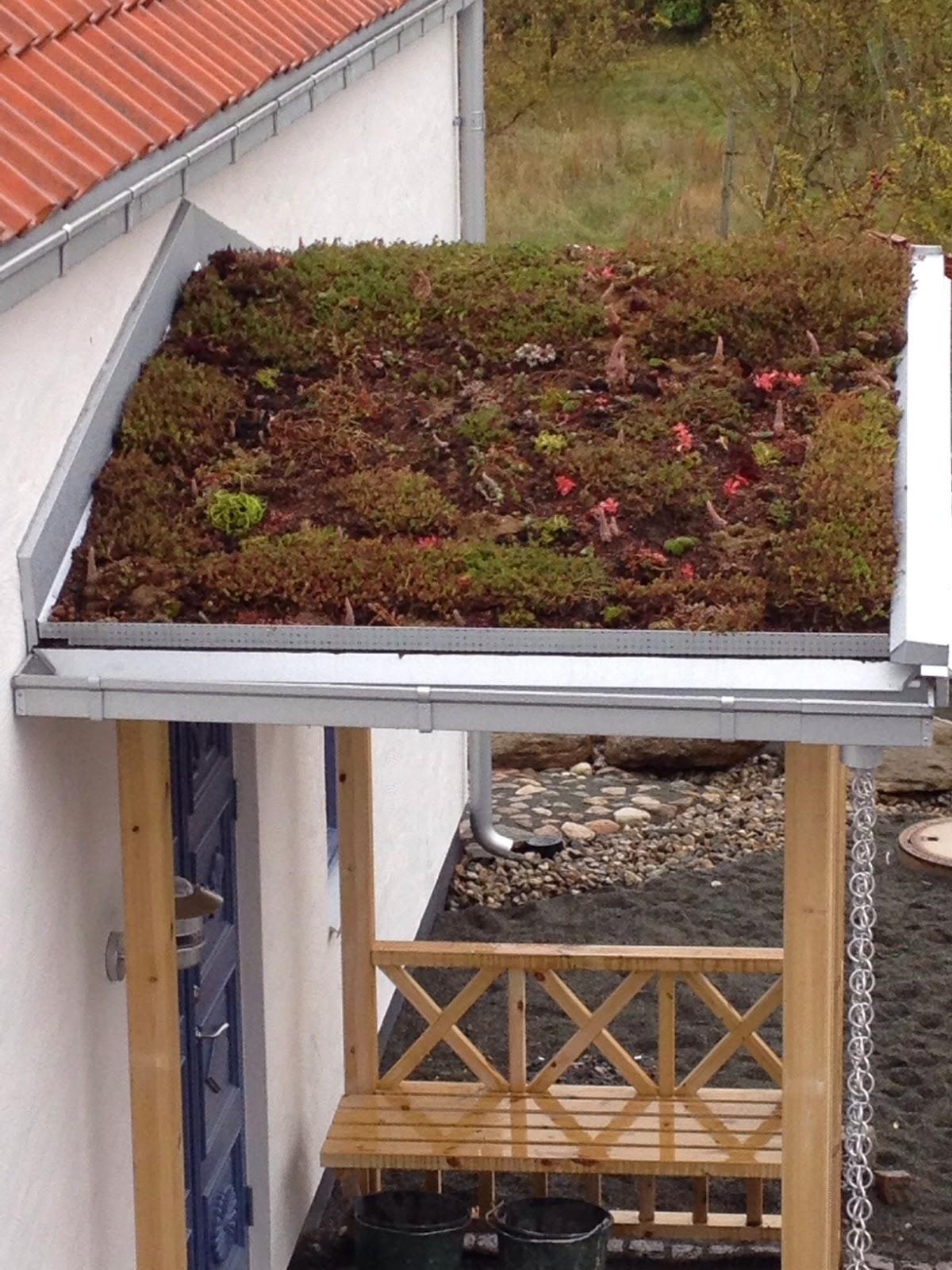 Villa Natura ekologiskt lågenergihus farstukvist sedum tak